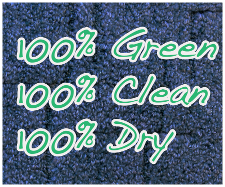 Dry Carpet Cleaning Edgewater FL