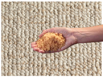 HOST Low Moisture Carpet Cleaning Palm Beach
