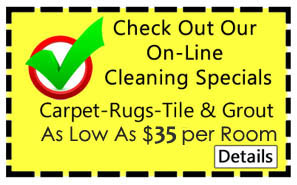 carpet cleaning prices edgewater fl